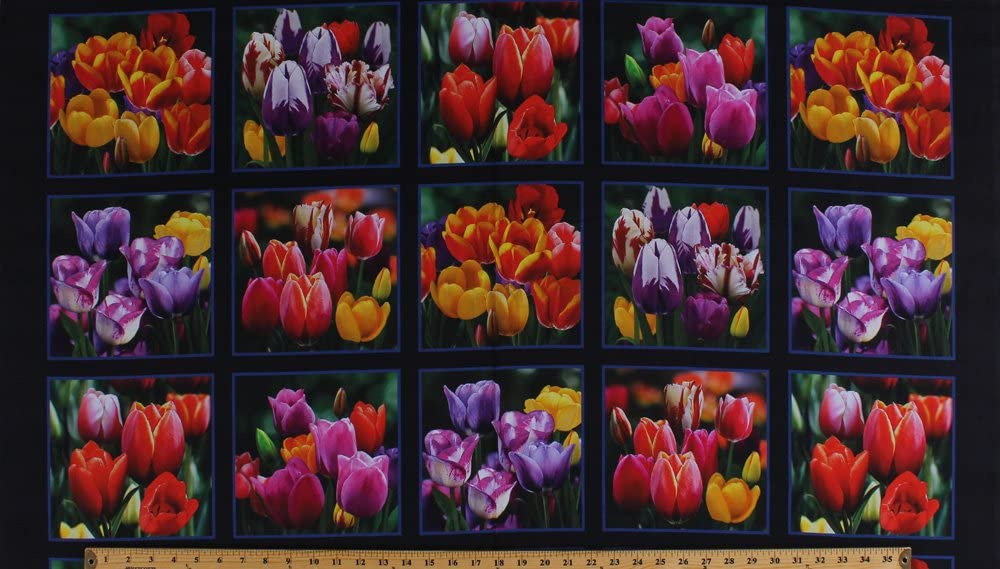 "23.5"" X 44"" Panel Tulips Tulip Flowers Floral Spring Digital Garden Digital Print Cotton Fabric Panel (DP534BLACK)"