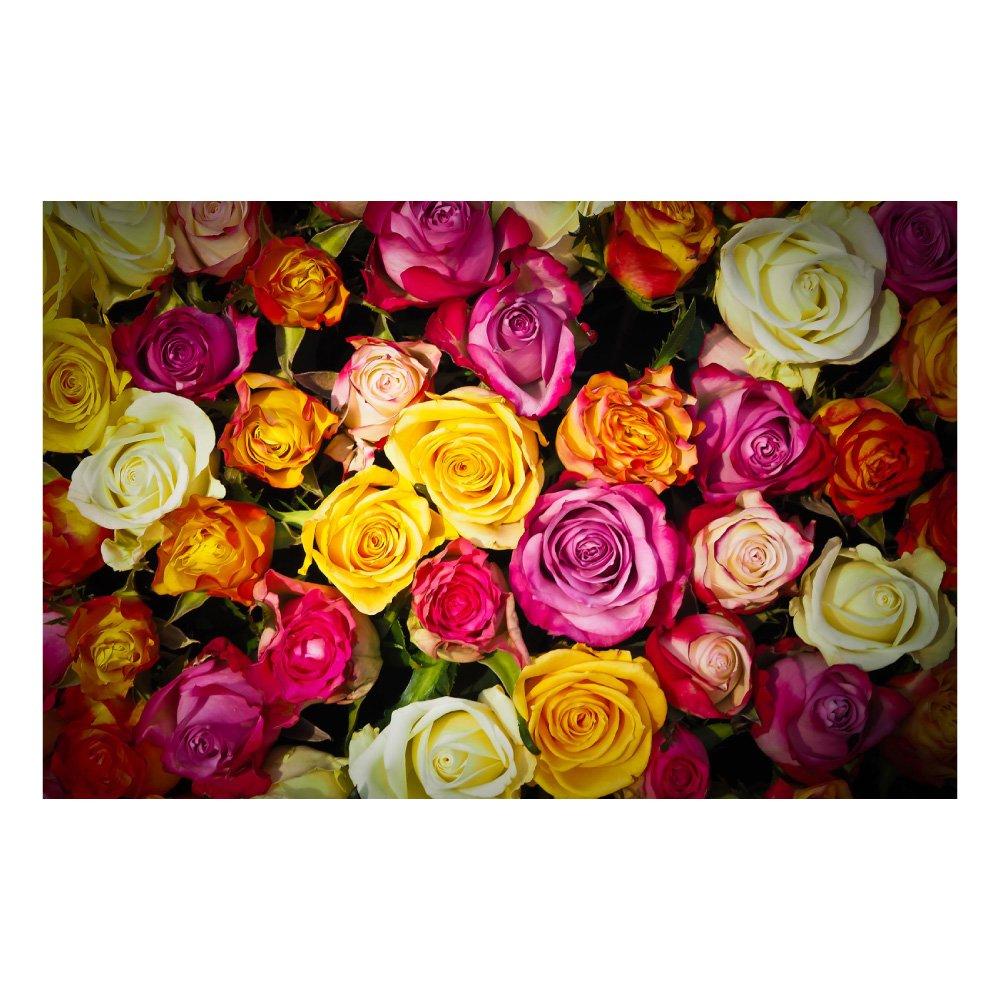 特大ウォールステッカー MU3アクセント壁紙 ローズ ph2066☆ バラ 薔薇 花束 植物 風景 景色 写真 ポスター 絵画 シール B01HDNZ97A