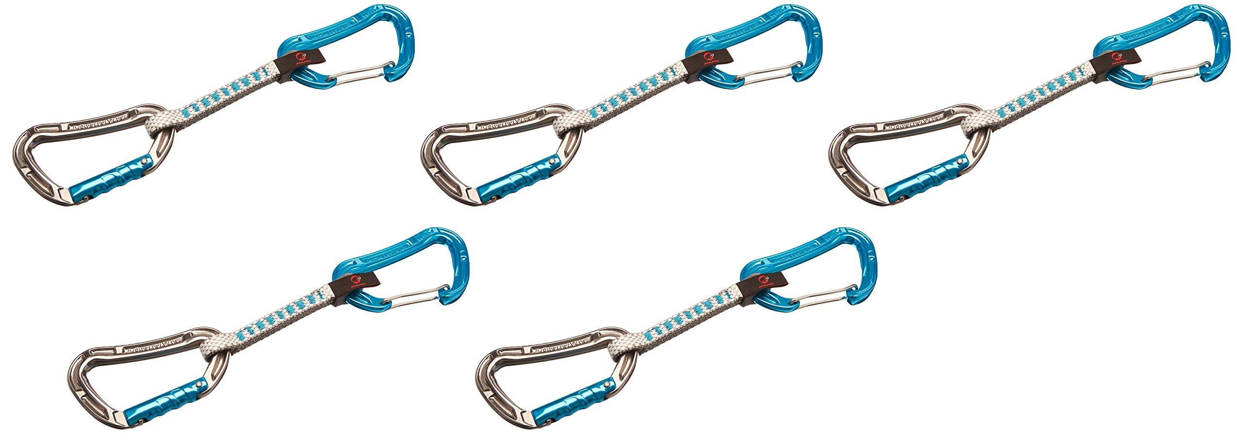 Mammut 5er Pack Bionic Express Sets basalt/aqua Straight Gate/Wire Gate 10 cm