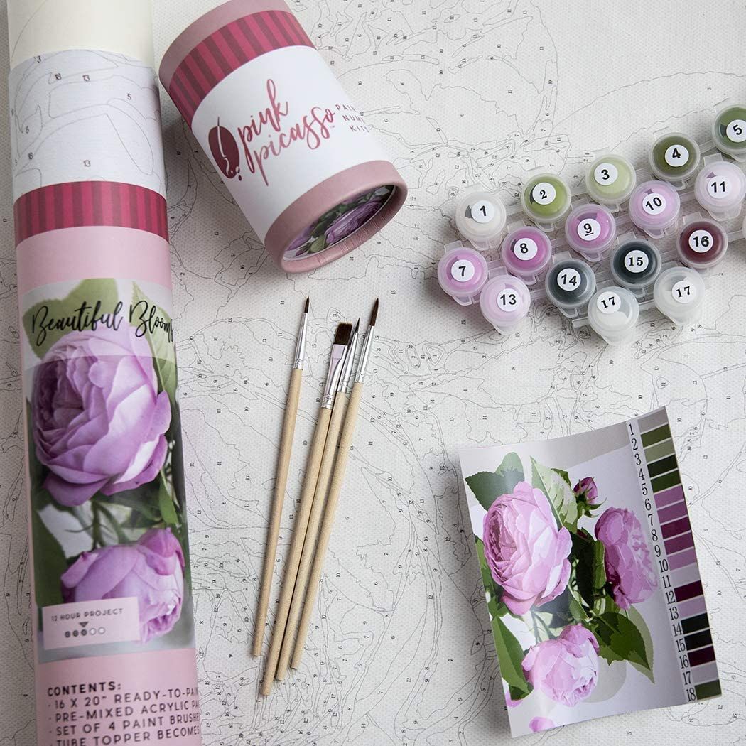 Lavender Pink Picasso Adult Paint by Numbers Kit 16x20