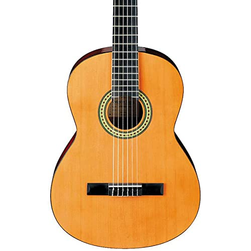 Ibanez 6 String Classical Guitar GA3