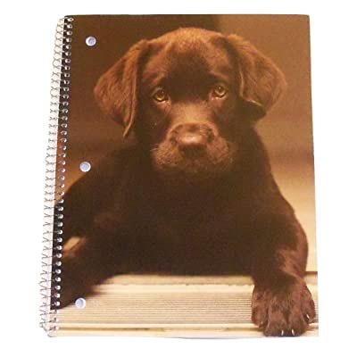 Carolina Pad Studio C The Puppy Paws Collection Wide Ruled Spiral Notebook (Puppy Eyes, Chocolate Lab, 8 Inches x 10.5 Inches, 60 Sheets, 120 Pages): Toys & Games