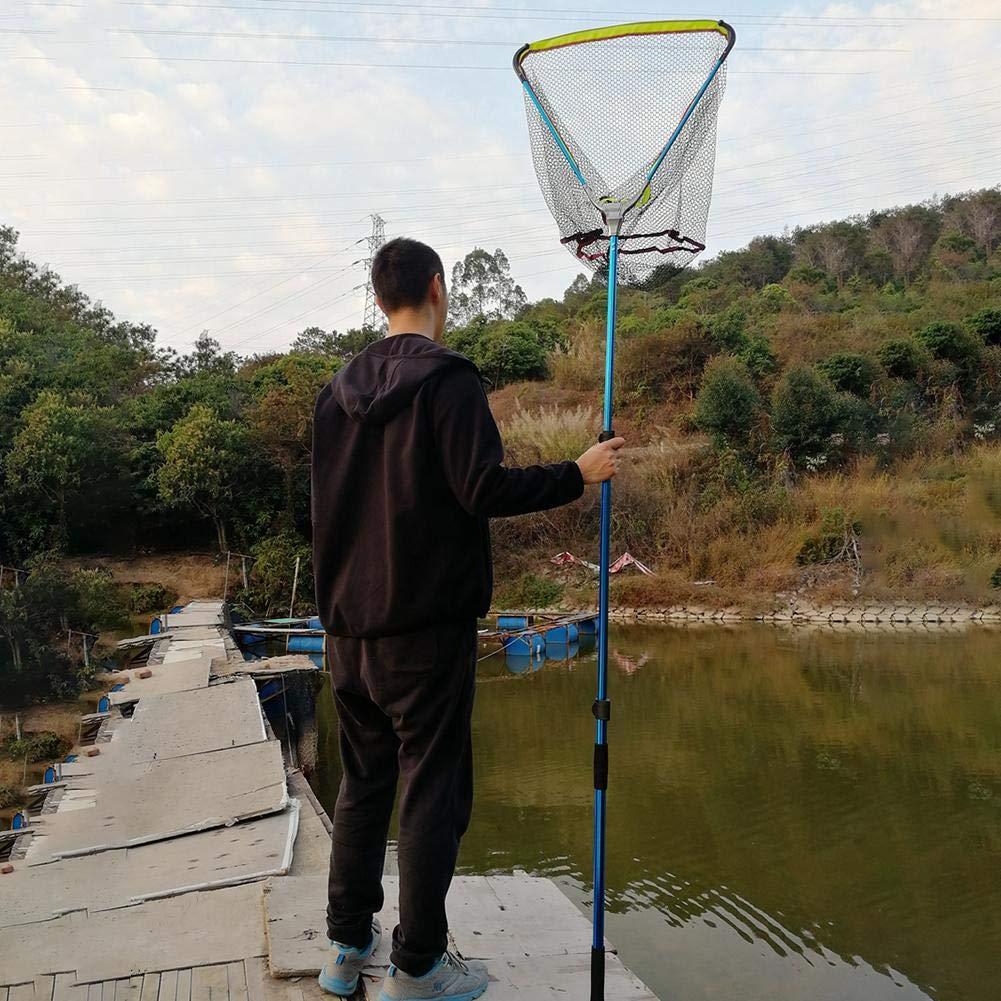 circulor Kescher Angeln Unterfangskescher Angelkescher Mit Faltbare Fischernetz Angelzubeh/ör F/ür Erwachsene Und Kinder Teleskop-Kescher 200cm