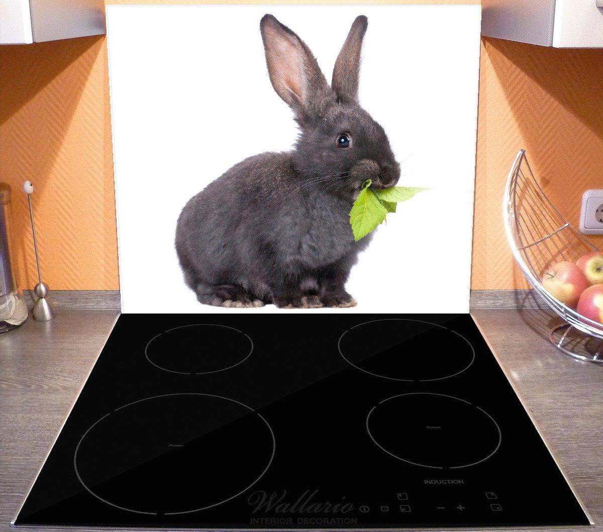 Wallario Herdabdeckplatte 1-teilig aus Glas Süßes Kaninchen Grünzeug 60x52cm
