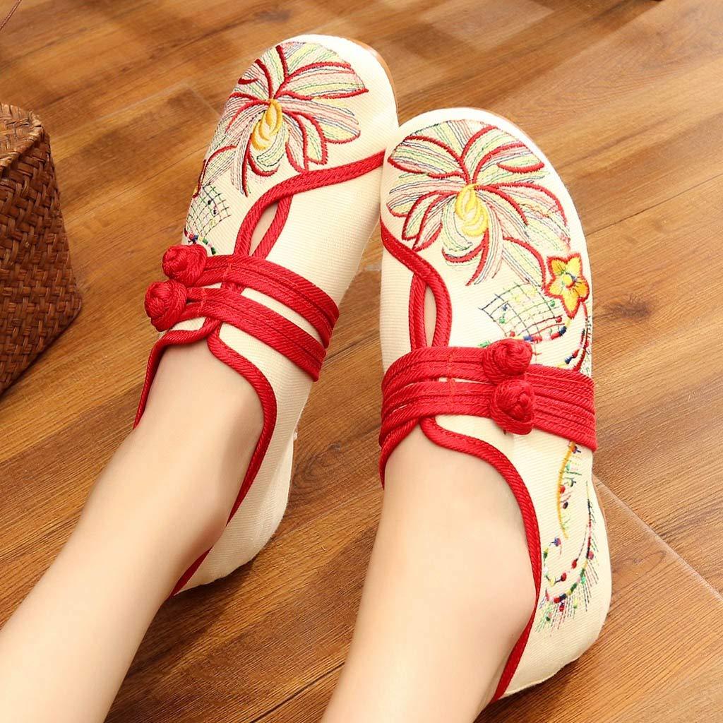 Zapatos de Baile de Tango Latino Vestir Fiesta Casuales Zapatillas Bailarinas Despu/és de Fiestas Zapatos para Bodas Manoletinas Ofertas Fannyfuny