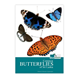 An Introduction to common Butterflies of Sri Lanka (English Edition)