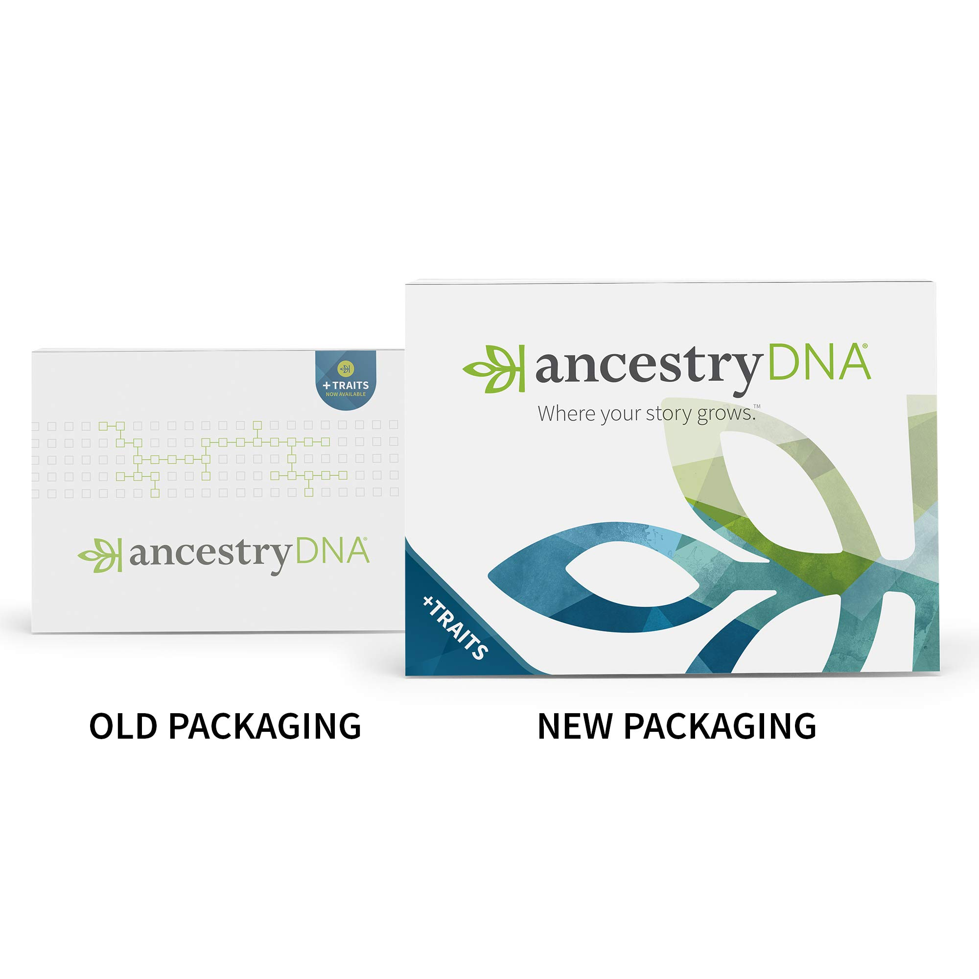 AncestryDNA: Genetic Testing Ethnicity + Traits by AncestryDNA (Image #3)