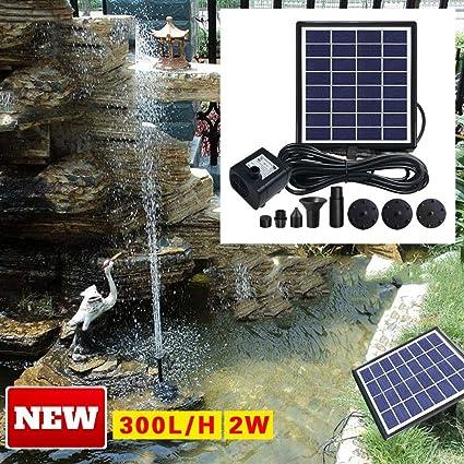 FCS Garden Bomba Agua Panel Energía Solar 2W Solar Bombas para ...