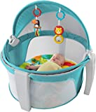 Fisher Price on the Go Baby Dome, Multi Color