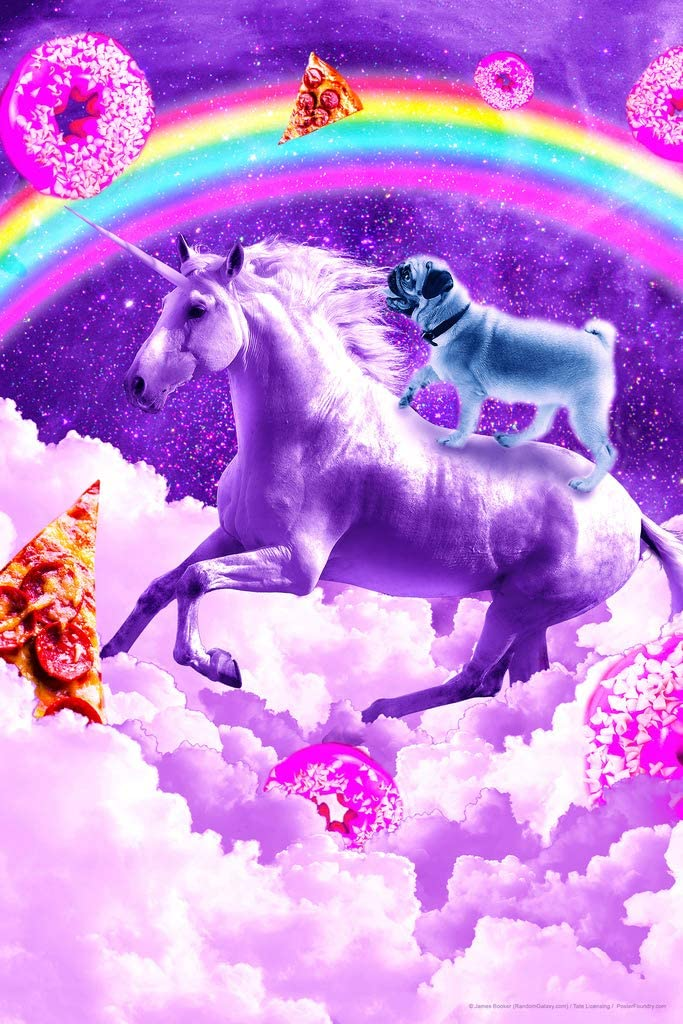 Pug in Space Riding A Unicorn Rainbow Pizza Donuts Random Galaxy Funny Cute Awesome Epic Cool Wall Decor Art Print Poster 12x18
