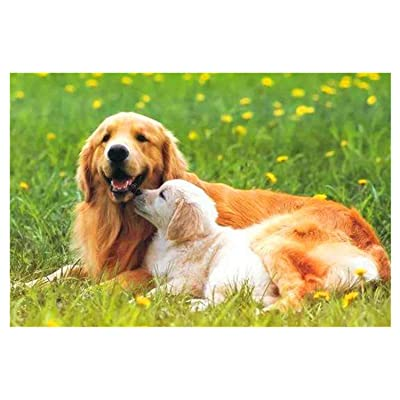 Landscape Pattern Puzzle 1000 Jigsaw Puzzle Kids Adult –Golden Retriever Dog mom and Son- Large Puzzle Game Artwork for Teens-Hands-on Ability Development-Improved Thinking Ability-Family Time: Toys & Games