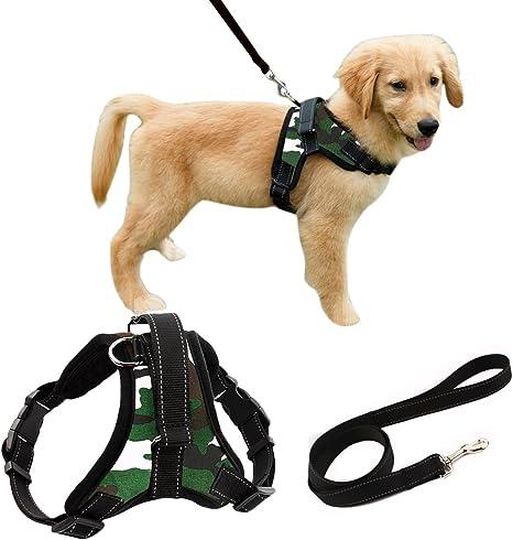 Arnés para perro Liying, acolchada, ajustable, para que el perro ...