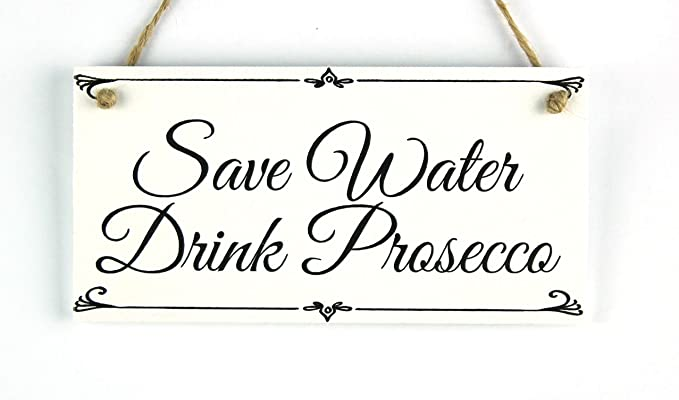 Pink Prosecco Novelty Wall Hanging Sign Plaque Funny Wood Sass /& Belle