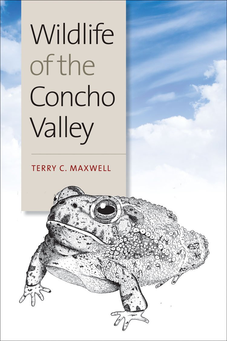 Download Wildlife of the Concho Valley (W. L. Moody Jr. Natural History Series) ebook