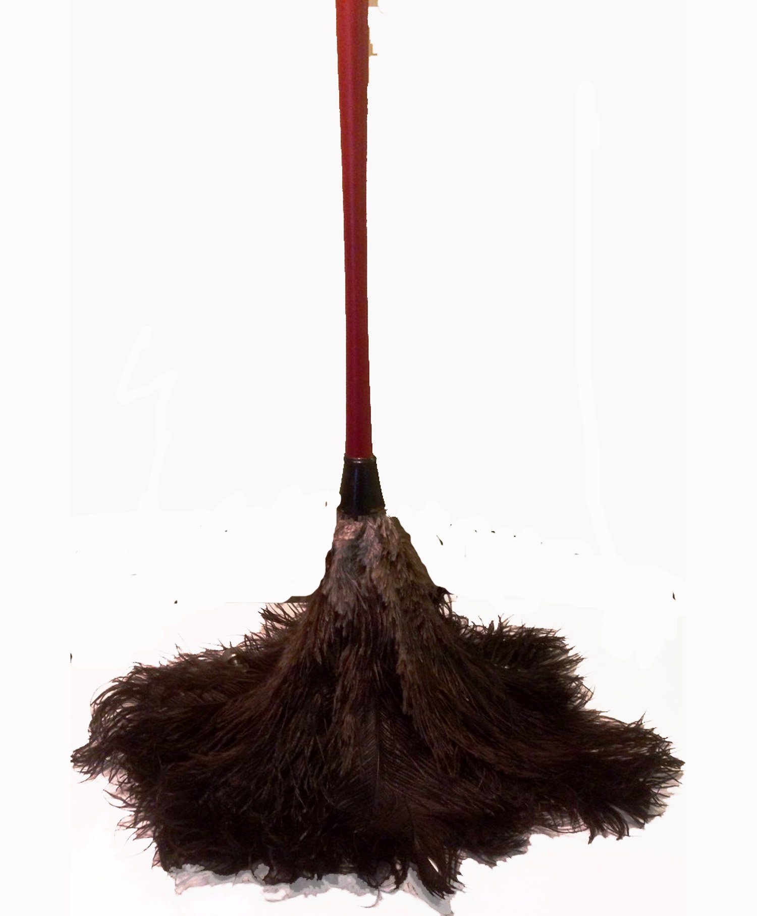 AAYU Brand Premium Professional Feather Duster, Natural Duster for Feather Moping and Cleaning, Eco-Friendly Genuine Ostrich Feather Duster with Wooden Handle, Easy to Clean Dust