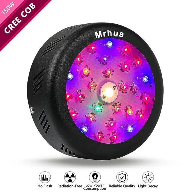 Amazon.com: Mrhua - Lámpara LED para crecimiento de plantas ...