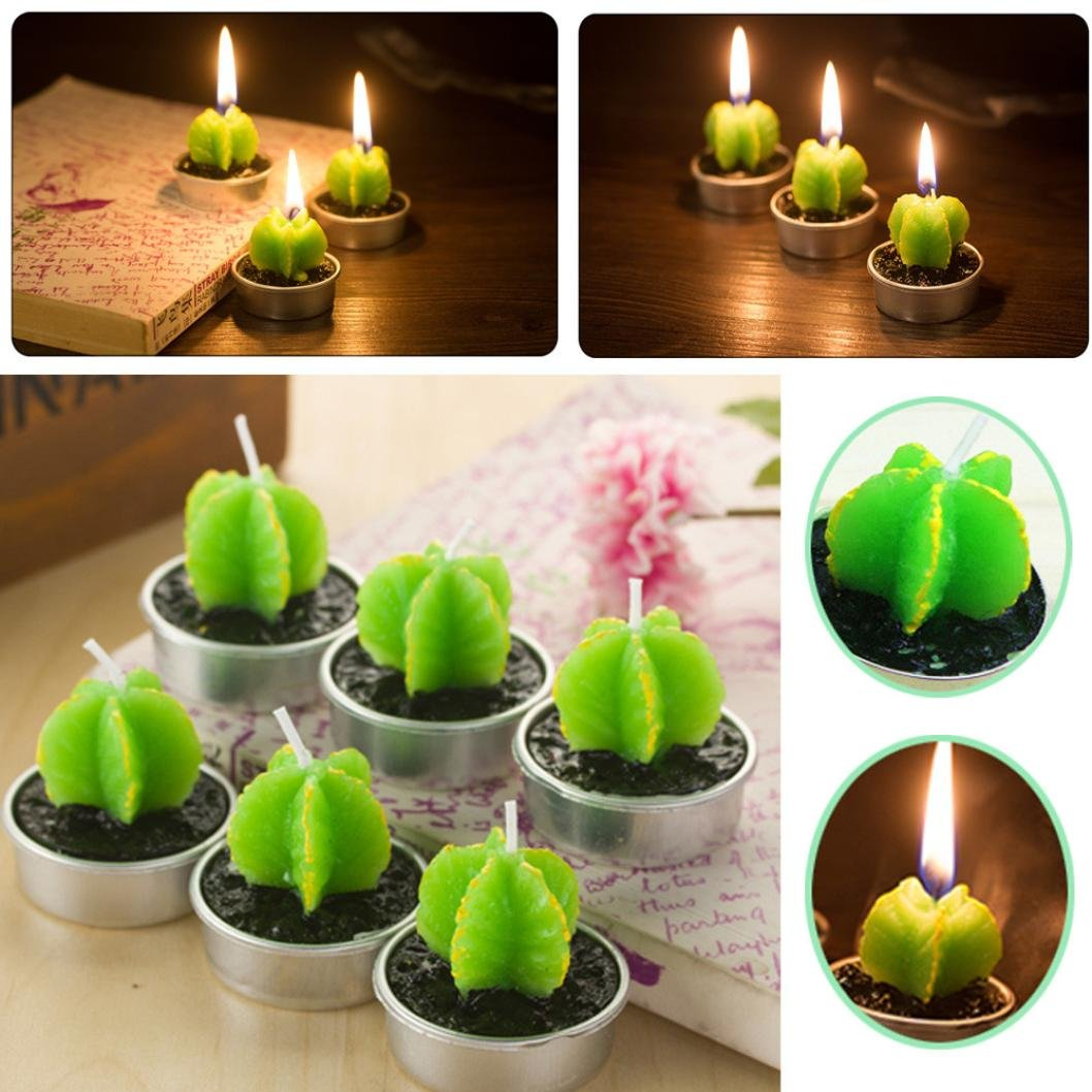 Livoty Non-spilling Cactus Candles for Home Decoration 6 Pcs great gift idea for your friends