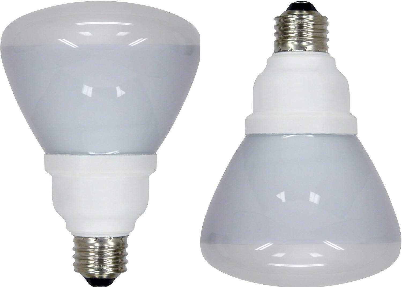 GE Lighting 20708 Energy Smart CFL 16-Watt (65-watt replacement) 750 ...