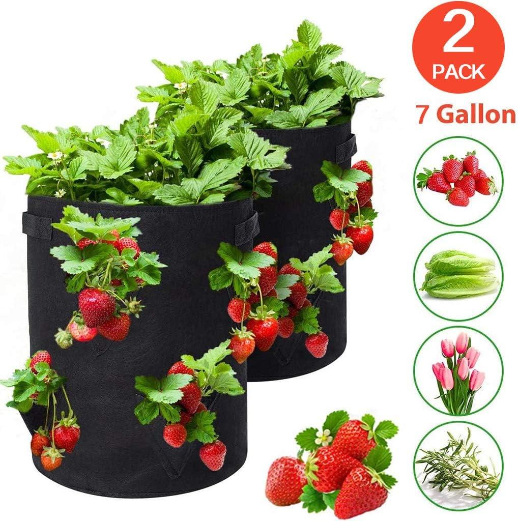 Erdbeere Pflanzsack,Pflanzen Tasche Pflanzbeutel