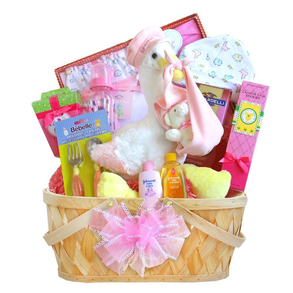 Special Delivery! Deluxe Newborn Baby Gift Basket - Girl