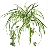 Bird Fiy Artificial Flowers Spider Plant Simulation Greenery Indoor Outside Home Garden Office Verandah Wedding Décor 2PCS