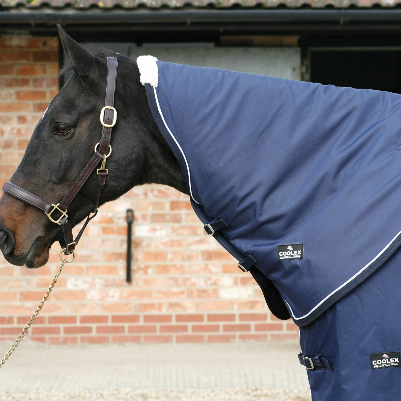 Free UK Shipping Mark Todd Coolex Cooler Rug