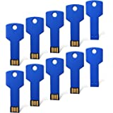 RAOYI 10PCS 2GB USB Flash Drive Metal Key Design USB Flash Drive Metal Key Shaped Memory Stick USB 2.0 Blue 2G