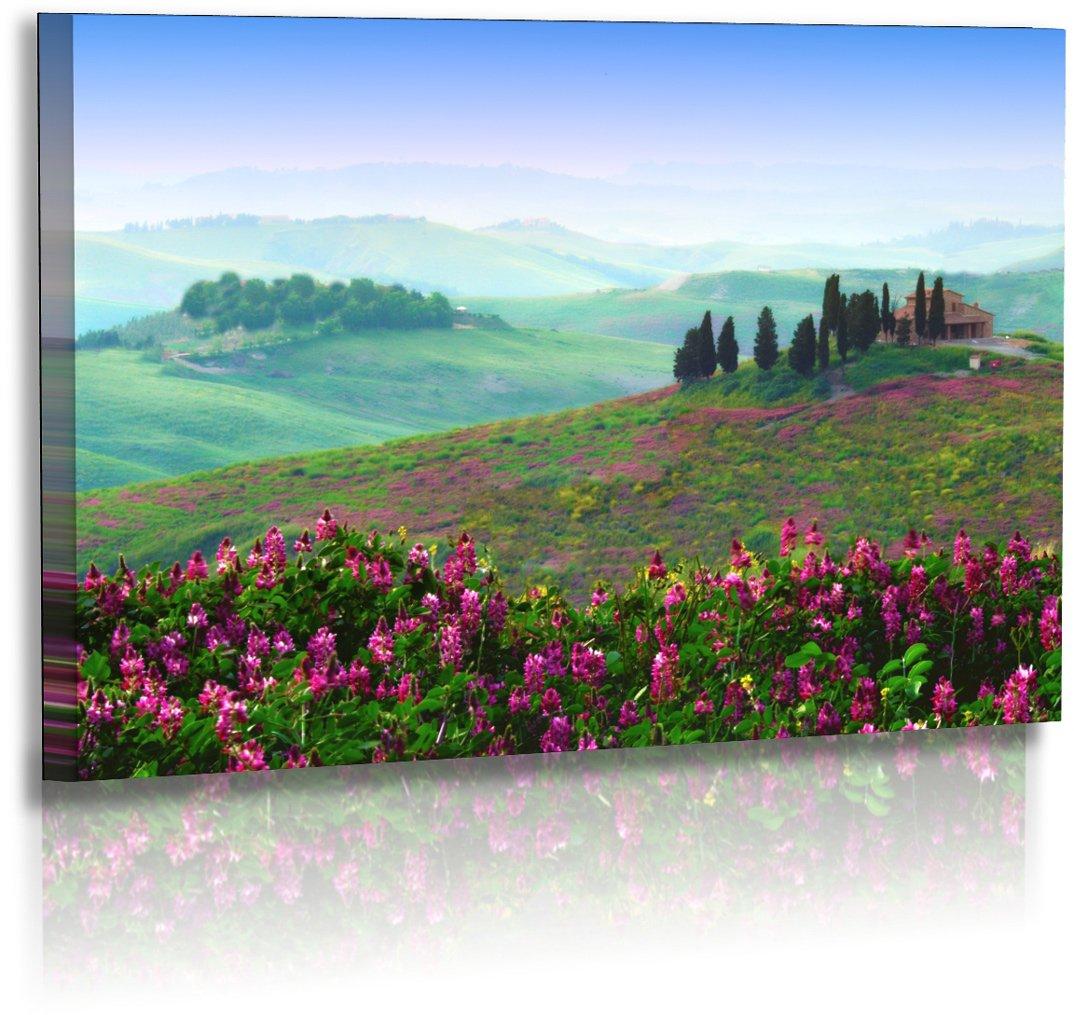 Premium Premium Premium - Leinwand - Landschaftsbilder -Naturbilder - Sonnenuntergang - Italien - Toskana - Frühling - Landschaft - Bilder - Wandbilder XXL - Bild - Fotoleinwand - Leinwanddruck (140 cm x 80 cm) f5fe57