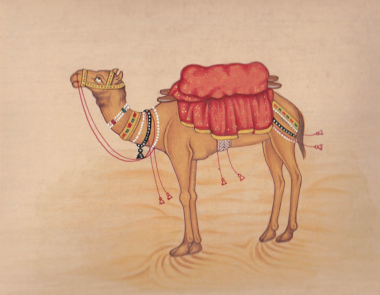 Camel - Watercolor Painting On Paper by Exotic India (Image #1)