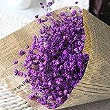 1 50 unidades Flores artificiales secas inmortales de Danapp Amarillo