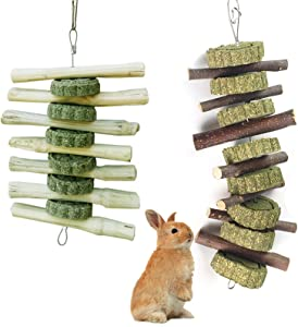 CAILOS Chew Toys Teeth Grinding for Guinea Pigs,Rabbit,Chinchillas,Hamsters,Totoro,Rodent.Small Animals etc.