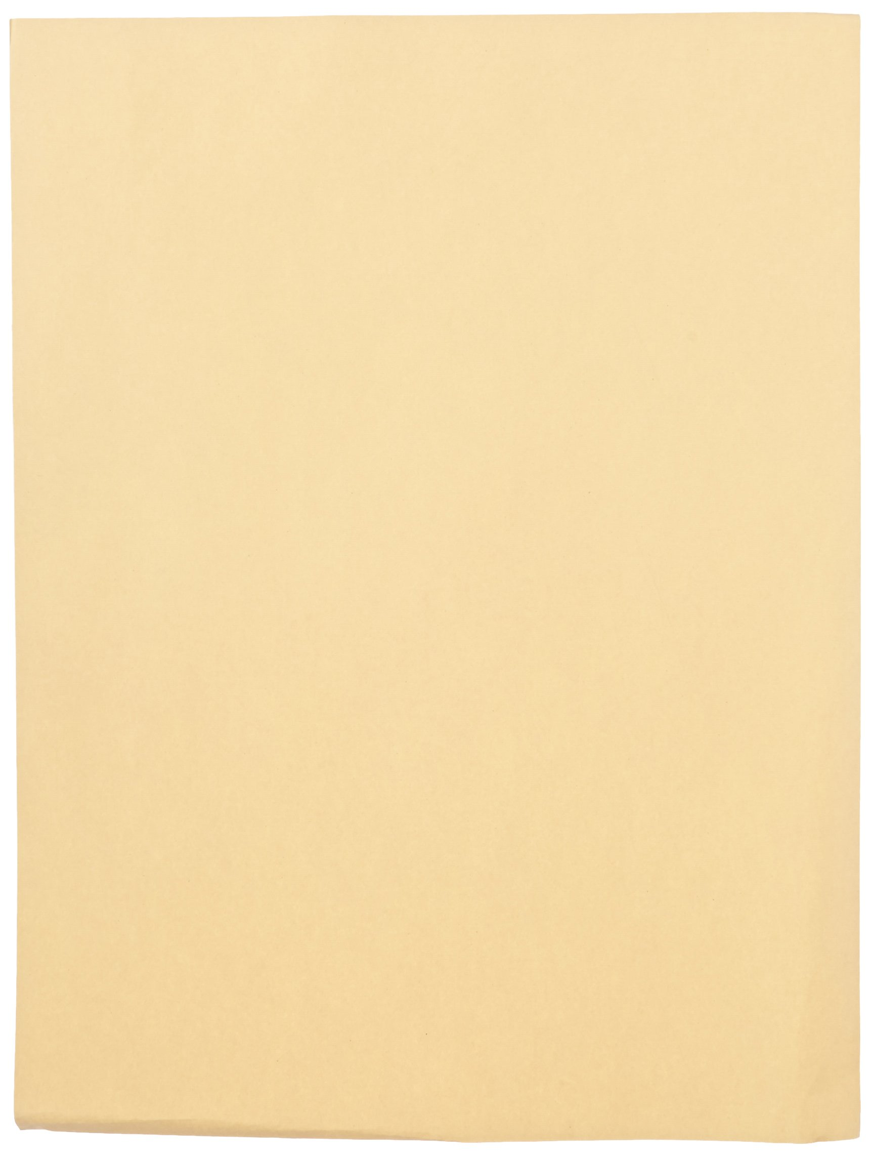 Sax Manila Drawing Paper, 60 Lb., 18 x 24 Inches, Pack of 500 by Sax