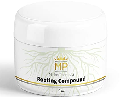 Rooting Gel for Cuttings – IBA Rooting Hormone - Cloning Gel for Strong  Clones - Key To Plant Cloning - Midas Products Rooting Gel Hormone for
