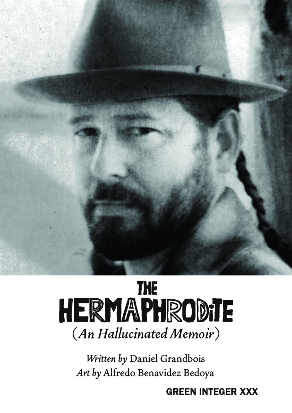 The Hermaphrodite: An Hallucinated Memoir (Green Integer) PDF