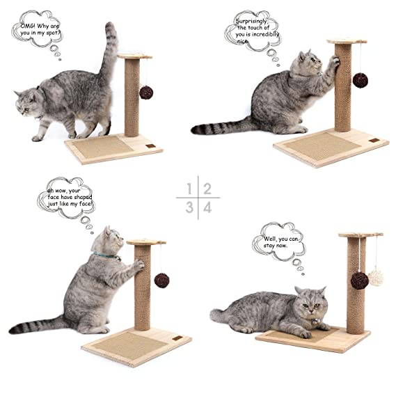 Amazon.com : Sweet Devil Cat Scratching Post Activity Tree Detachable with Funny Toy Balls : Pet Supplies