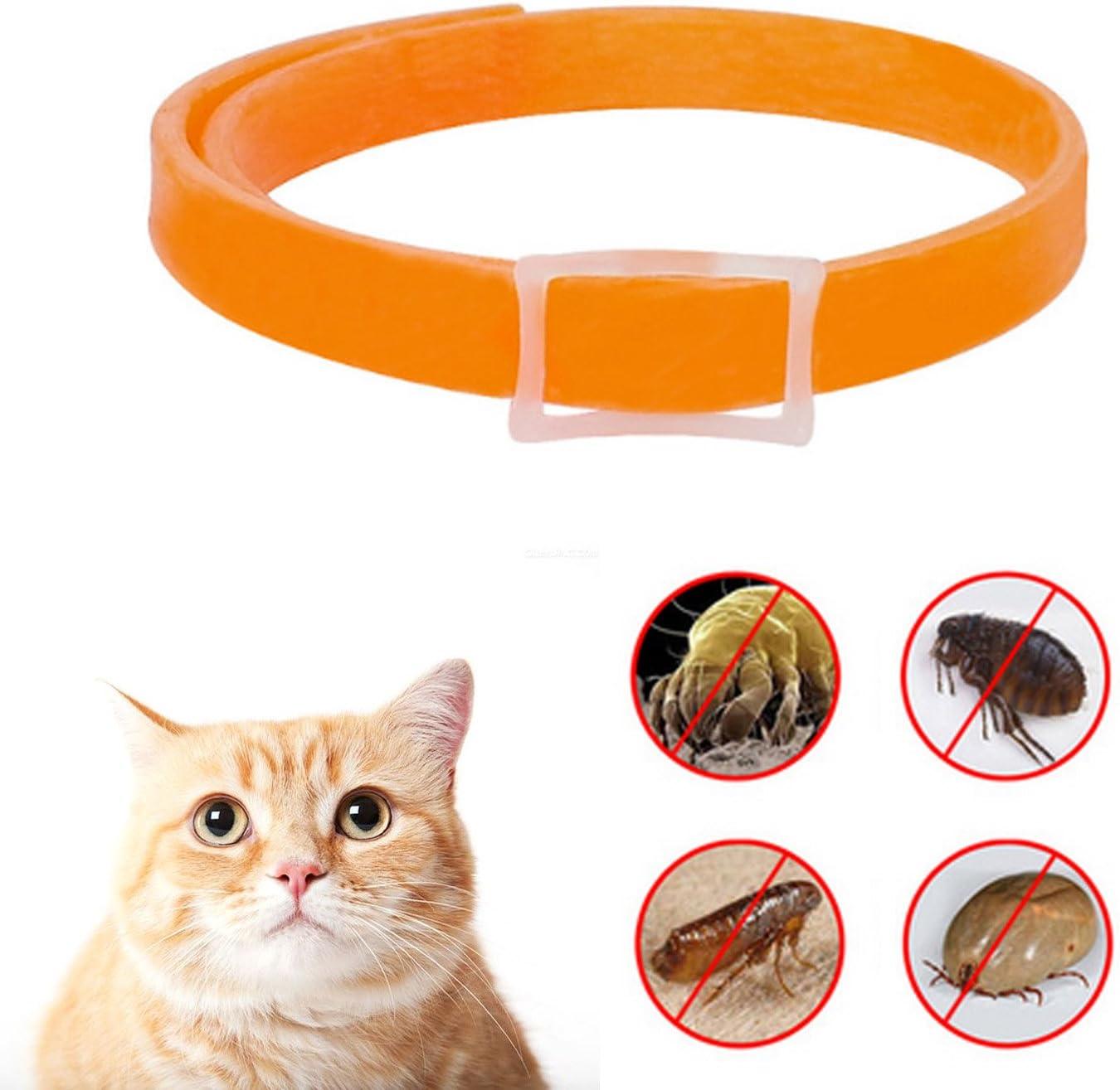 Beetest Mini 33cm Pet Cat Health Anti Lice Collar Anti Flea Tick Pest Mosquitoes Repellent Collar Parasites Deworming Orange