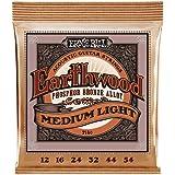 Ernie Ball 2146 Earthwood Medium Light Acoustic Phosphor Bronze String Set (12 - 54)