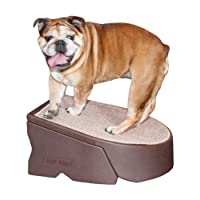 Amazon Best Sellers Best Dog Stairs Amp Steps