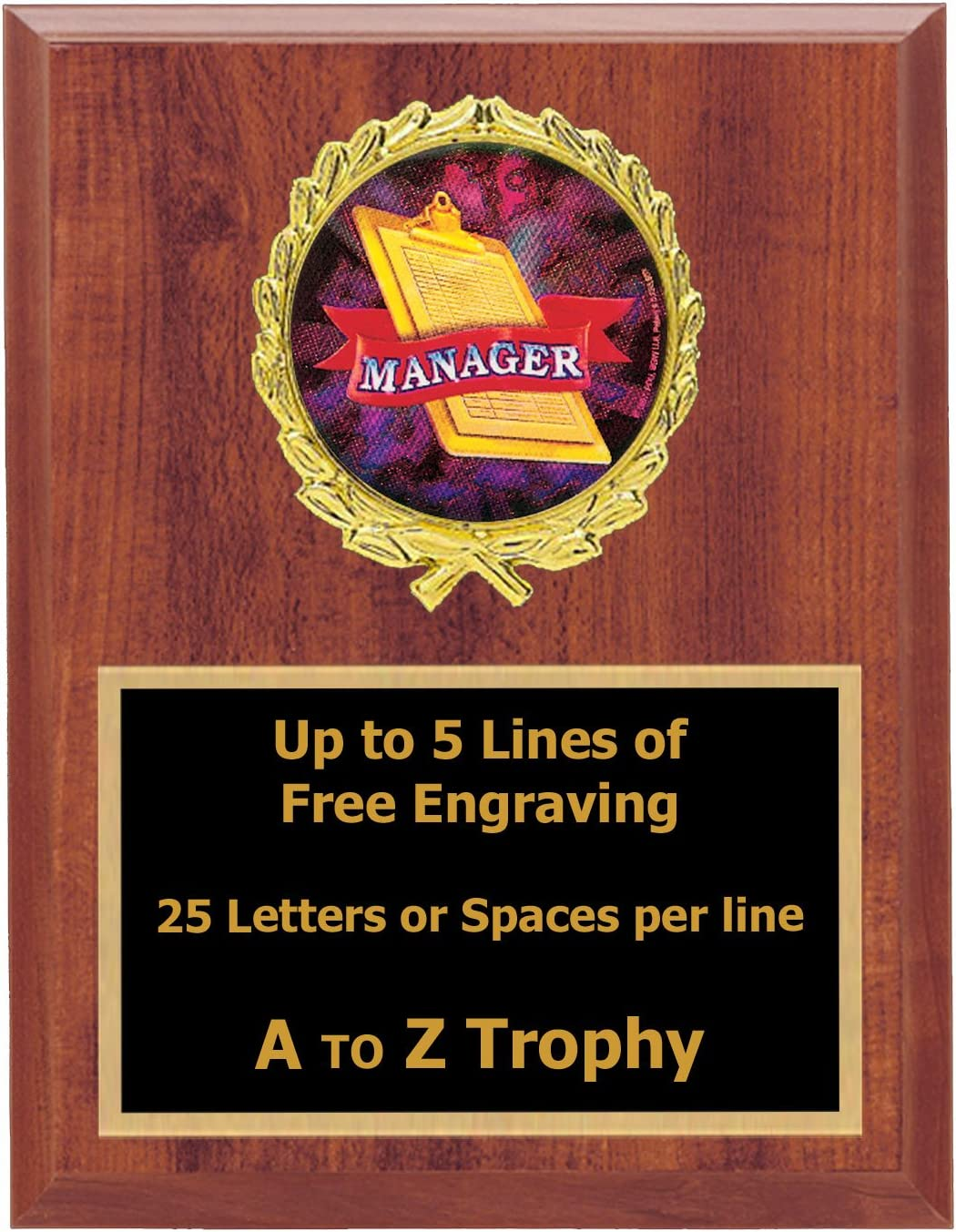 """Managers Player Football Trophy Football Trophy 10/"""" High Trophy Free Engraving"""