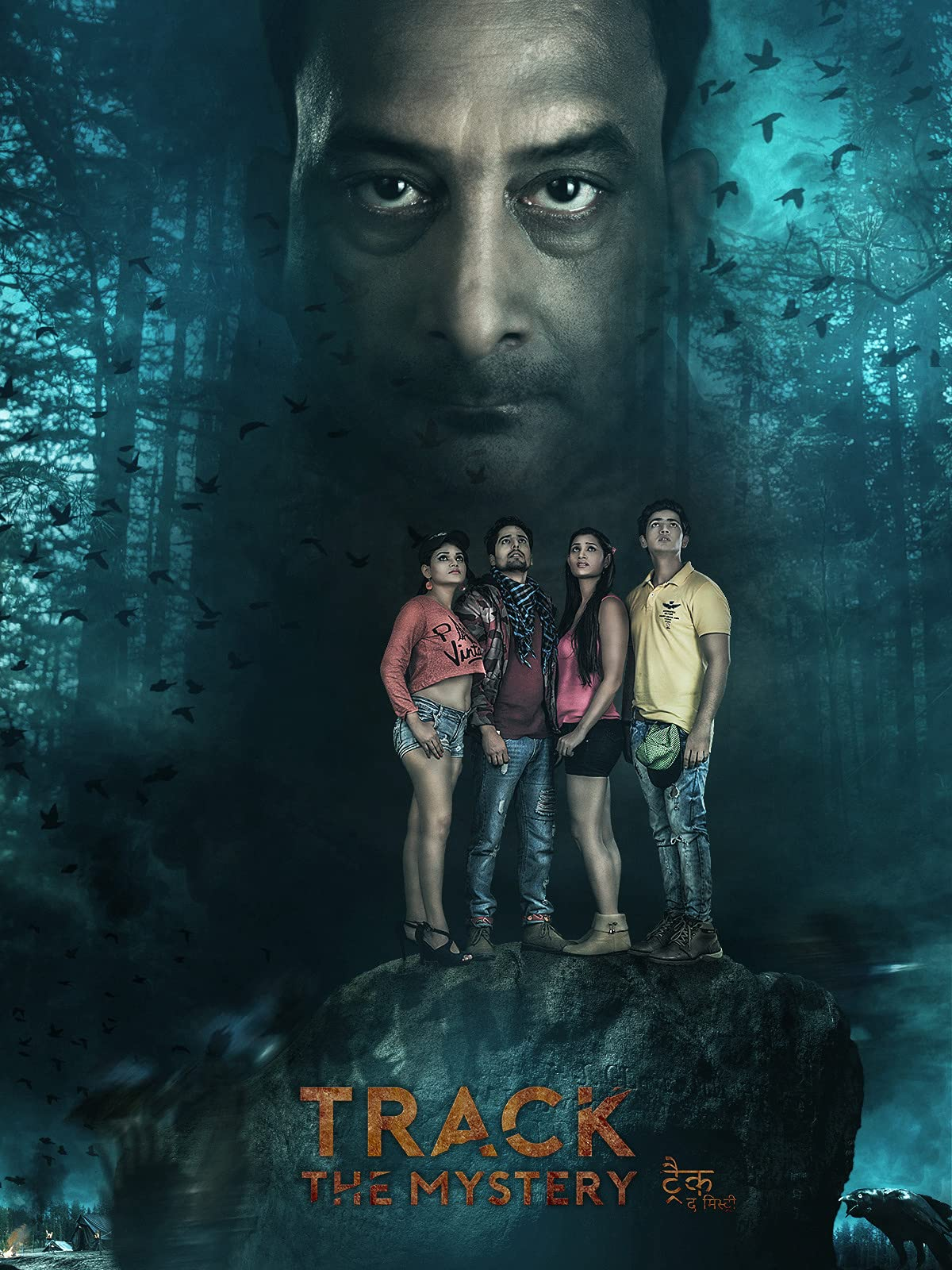 Track The Mystery on Amazon Prime Instant Video UK
