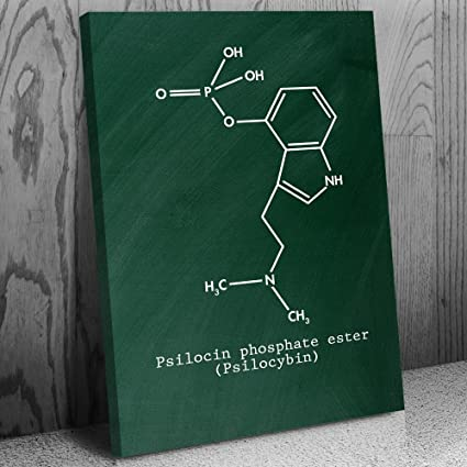 Amazon com: Psilocybin Molecule Canvas Print, Magic