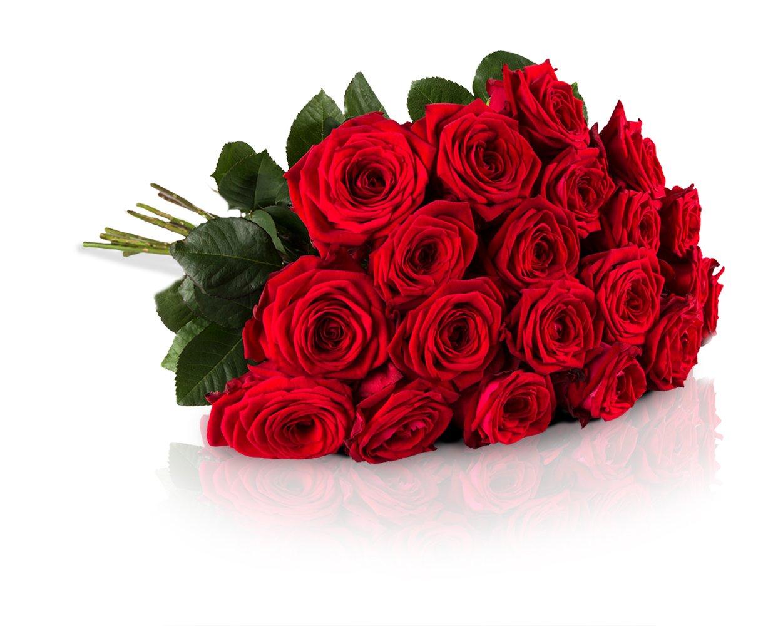 MIFLORA Blumenstrauß 20 Rote Rosen mit XXL-Blütenköpfen | Gratis Grußkarte inklusive