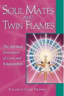 Amazon com: The Twin Flame Handbook (9781934912812): Josephine Smoke