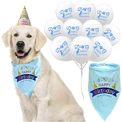 Amazon Dreamstartz Dog Birthday Bandana With Party Hat And 10 Balloons Blue Puppy Scarf For Pet Supplies