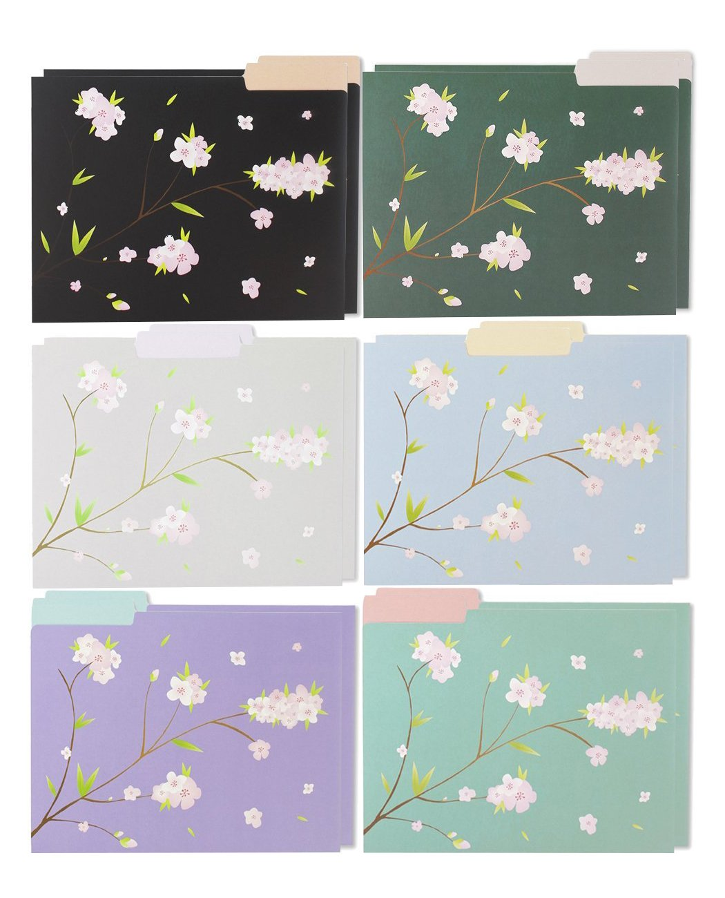 12 Pack Decorative Assorted Designer File Folder Set - 6 Different Japanese Cherry Blossom Designs - Letter Size with ½ Inch Cut Top Memory Tab - File Filing Organizers - 9.5 x 11.5 Inches