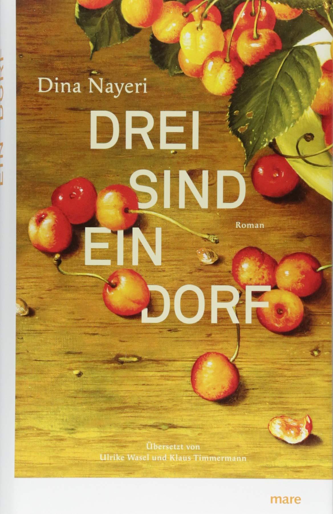 Drei sind ein Dorf: Amazon.de: Dina Nayeri, Ulrike Wasel, Klaus Timmermann:  Bücher