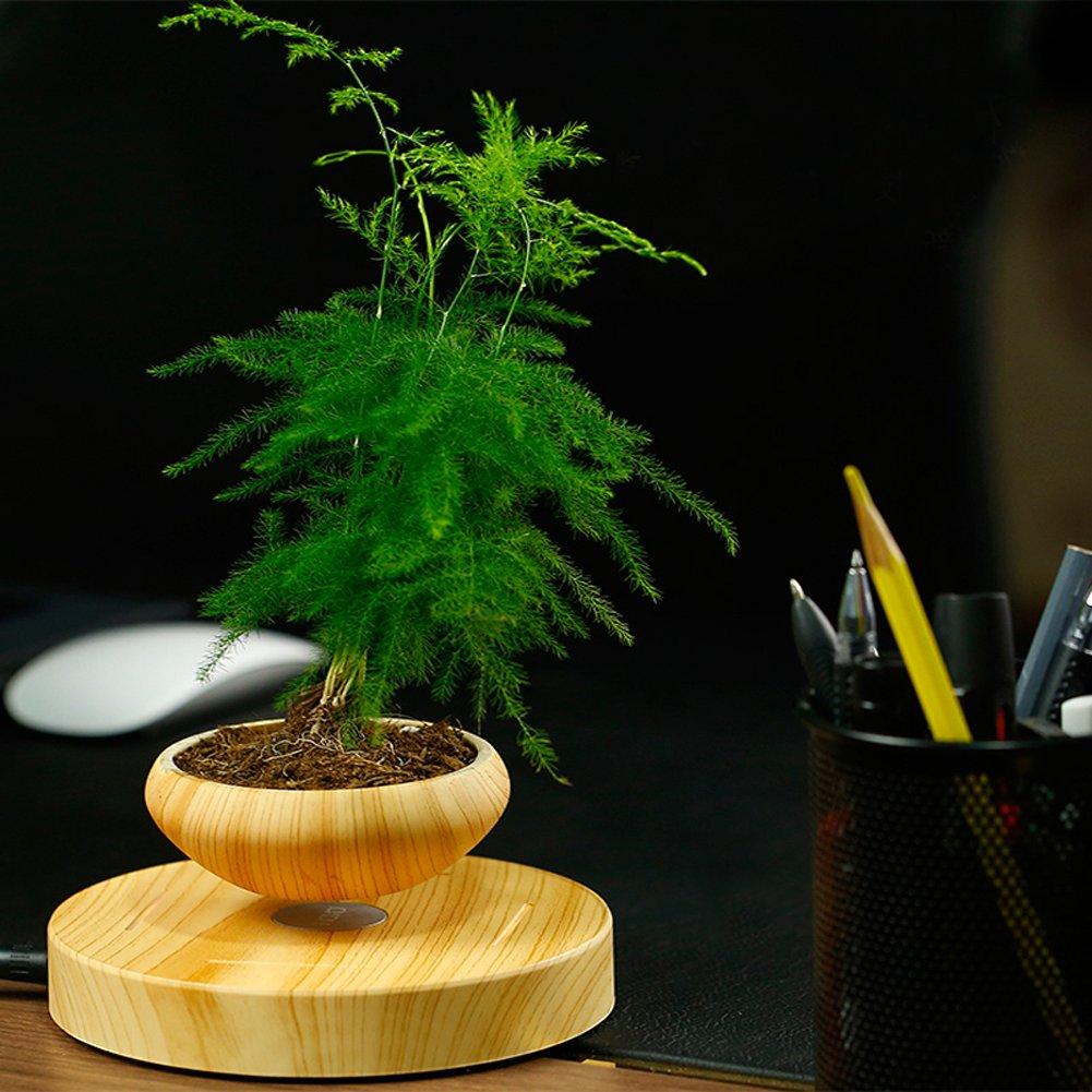 【日本仕様】空中浮揚プランター 宙に浮く植木鉢 Levitating Potted Plant / Air Bonsai