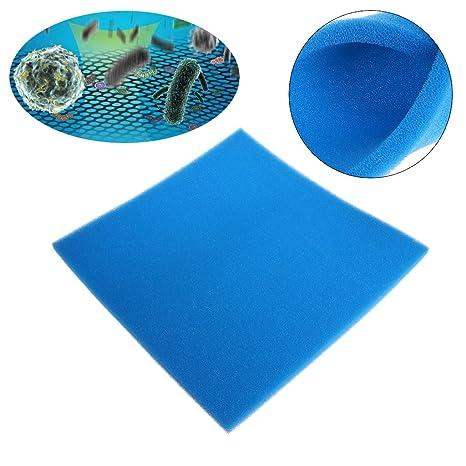 Xuniu Acuario Filtro de algodón, Filtro de Espuma Esponja de Tanque de Peces (Azul): Amazon.es: Hogar