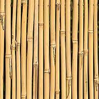 Varillas de Bambú Naturales Ecológicas. 25 Estacas para Uso Agrícola y Huertos Domésticos. Tutores para Tomateras y…