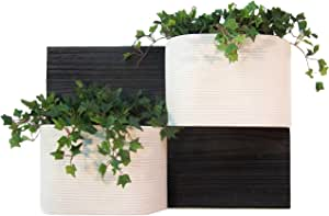 CompoClay LW-1009SET-SSS-04 Horizon Living Wall Planter Set, Includes 2 Planters and 2 Panels